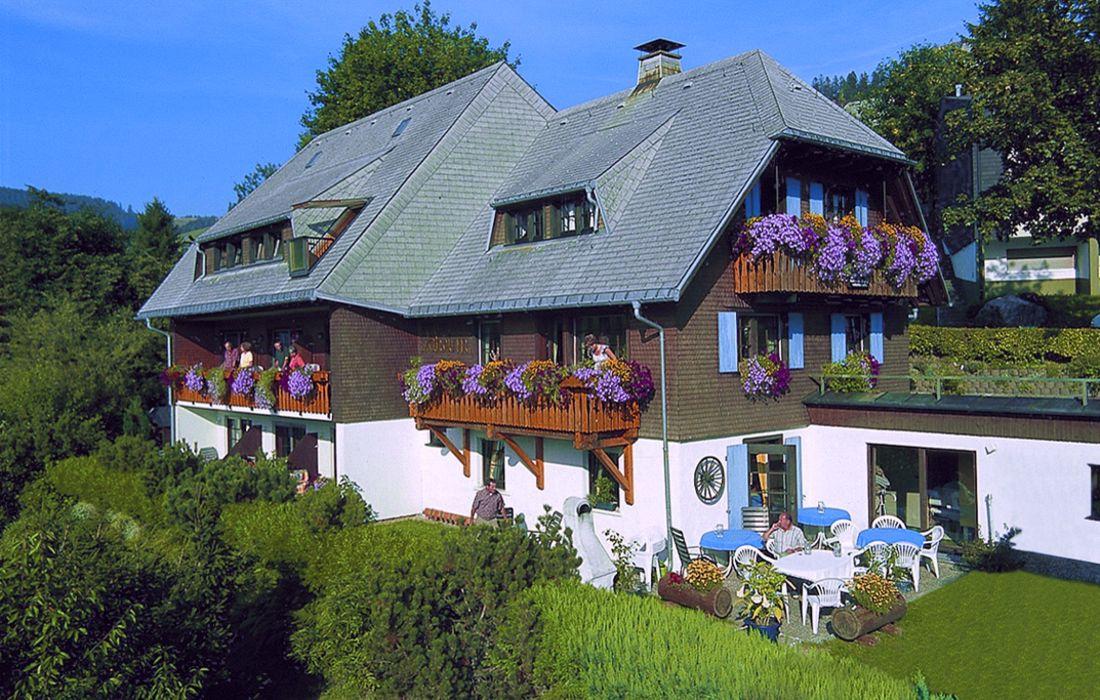 Pension Daheim - Todtnauberg
